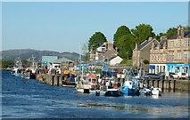 NR8668 : Fishing boats, Tarbert by Rob Farrow
