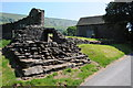 SO2827 : Ruins near Llanthony Priory by Philip Halling