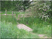 NZ3412 : Footbridge and stile on footpath south of Middleton St George by peter robinson