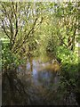 ST0410 : River Culm by Derek Harper