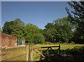 ST0512 : Wall at Old Bridwell by Derek Harper
