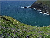 SX0589 : Tintagel Haven by Chris Gunns