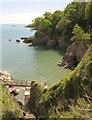 SX8850 : Castle Cove from beside Dartmouth Castle by Derek Harper