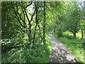 NS6178 : Blane Valley Railway by Richard Webb