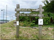 NX3343 : Garnets Walk Signpost by Billy McCrorie