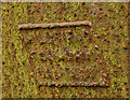 J4493 : Headstone, Templecorran old church, Ballycarry (4) by Albert Bridge