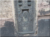 NY6820 : Ordnance Survey  Flush Bracket 1251 by Peter Wood