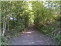 ST5458 : Villice Lane by James Ayres