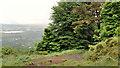 J3379 : Path, Belfast Castle (7) by Albert Bridge