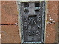 NY7411 : Ordnance Survey  Flush Bracket 1245 by Peter Wood