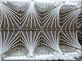 SX9292 : Palm vaulted roof, Exeter Cathedral by Rob Farrow