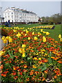 TA1180 : Filey: tulips around the bandstand by Chris Downer