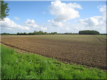 TG0826 : View across the fields from Wood Dalling churchyard by Jonathan Thacker