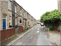 SE1225 : Osborne Grove - Wakefield Road by Betty Longbottom