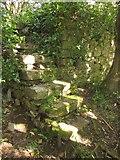 SX9364 : Steps and wall, Walls Hill by Derek Harper