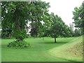 SP5106 : Fellows' Garden, Merton College by Virginia Knight