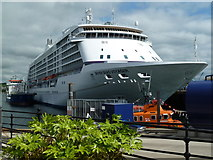 SW8132 : Falmouth Docks - Seven Seas Voyager by Chris Allen
