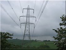 NZ3535 : Transmission lines seen from the south east corner of Raisby Quarry by peter robinson
