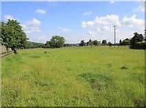 SP1452 : Field north of Church Lane by David P Howard