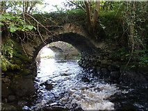 G7278 : Two bridges at The Lough Head by louise price