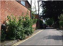 SK5639 : Nottingham - NG7 - (Park) by David Hallam-Jones