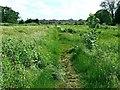 SU1586 : Pickard's Small Field, Gorse Hill, Swindon (5) by Brian Robert Marshall