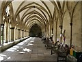 SU1429 : Salisbury Cathedral cloisters by Paul Gillett