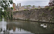 ST5545 : Wells : The Bishop's Palace - The Moat by Lewis Clarke