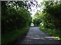 TL1277 : Minor road towards Leighton Bromswold by JThomas