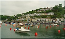 SX2553 : View across river to East Looe. by steven ruffles