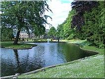 SK0573 : Pond in Pavilion Gardens by David Martin