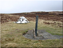 SN8190 : The summit of Carn Fawr by David Purchase
