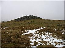 SN8187 : Pen Pumlumon Arwystli summit by David Purchase