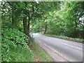 NT1166 : B7031 runs through Greenburn Wood by Richard Webb