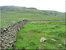 NY4116 : Field near Boredale Head by Christine Johnstone