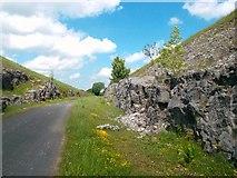 SK1462 : Tissington Trail near Hartington Moor Fm by Des Blenkinsopp