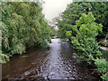 SE3170 : River Skell, Ripon by David Dixon