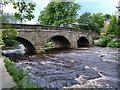 SE3170 : Archer Bridge, Ripon by David Dixon