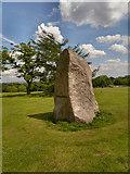 SD8203 : The Papal Monument, Heaton Park by David Dixon