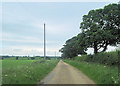 TF3164 : Lane East from Hall Farm towards Miningsby by John Firth