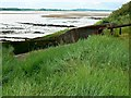 SO6804 : Hulk, Ships Graveyard, Purton, Gloucestershire (3) by Brian Robert Marshall