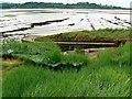 SO6804 : Hulk, Ships Graveyard, Purton, Gloucestershire (4) by Brian Robert Marshall