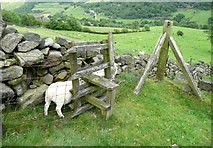SD9923 : Stile on the Cragg Hall branch of Hebden Royd FP87 by Humphrey Bolton