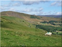 SK1482 : View from Cow Low looking towards Mam Tor by David Martin