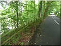 NU2002 : Road beside River Coquet by Russel Wills