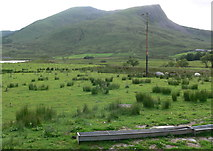 SH5752 : Rough pasture at Rhyd Ddu by Mat Fascione