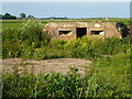 TF2207 : Pillbox on Speechley's Drove south of Eardley Grange by Richard Humphrey
