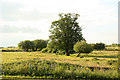 SU8368 : London Road view by Richard Croft