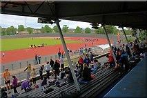 NZ5019 : The Main Stand, Clairville Stadium by Mick Garratt