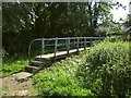 SY2493 : Footbridge across the Coly by Derek Harper
